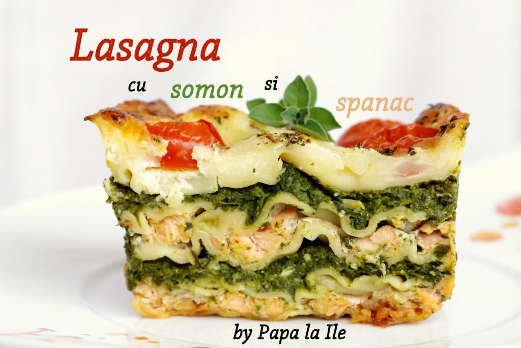 Lasagna cu somon si spanac (9)