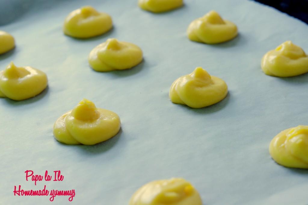 Choux-uri cu crema de branza si somon afumat (7)