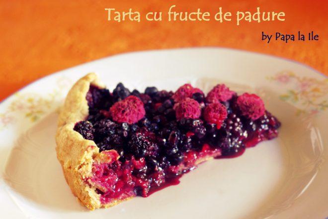 Tarta cu fructe de padure (1)