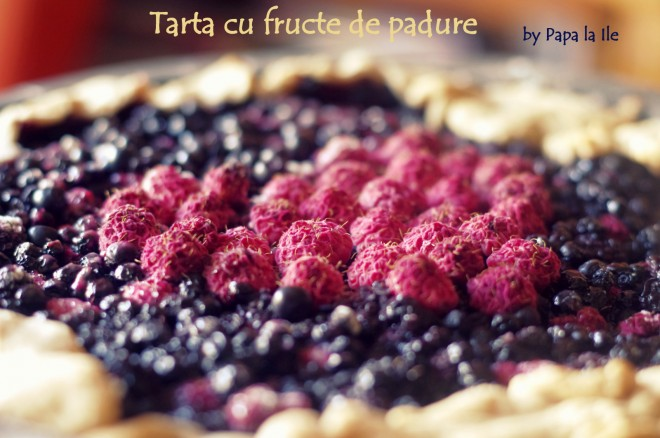 Tarta cu fructe de padure (3)