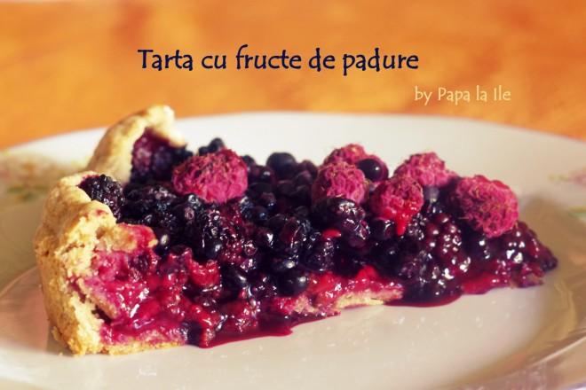 Tarta cu fructe de padure (4)