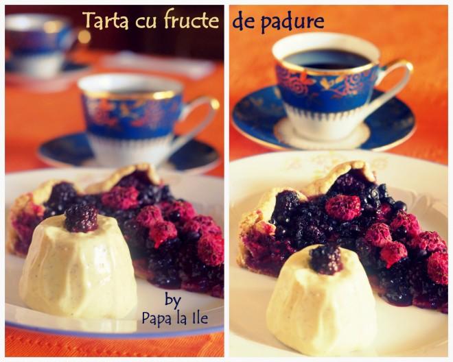 Tarta cu fructe de padure (5)