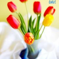 La mulți ani tuturor Florilor!